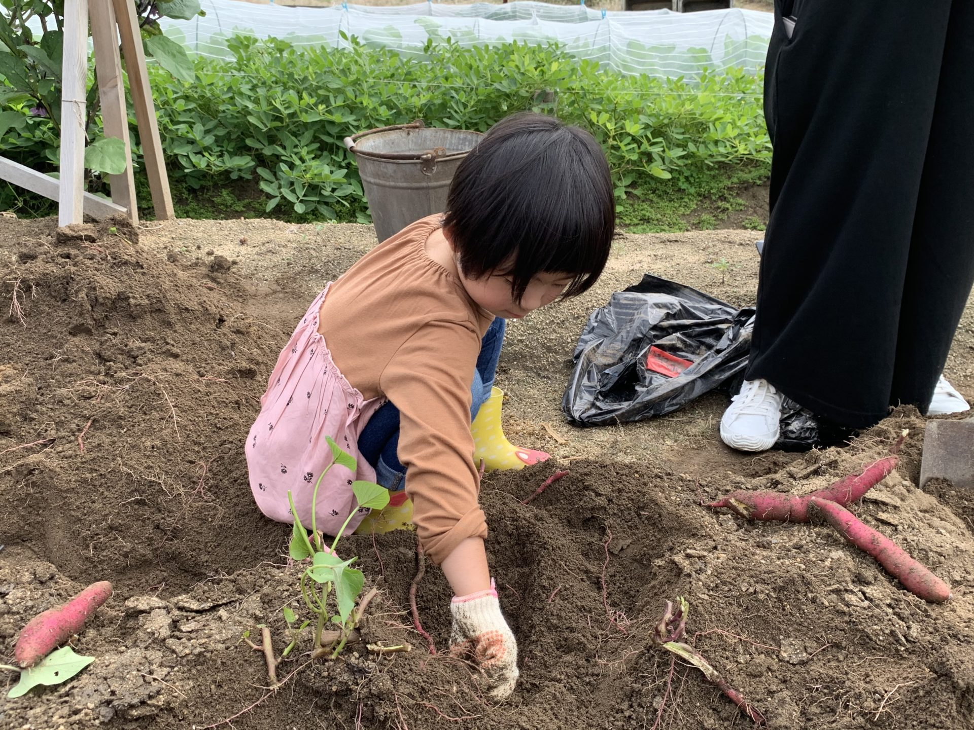 福山市子育て支援