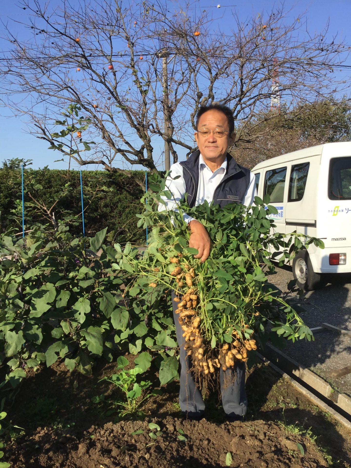 福山市自然素材健康住宅 収穫