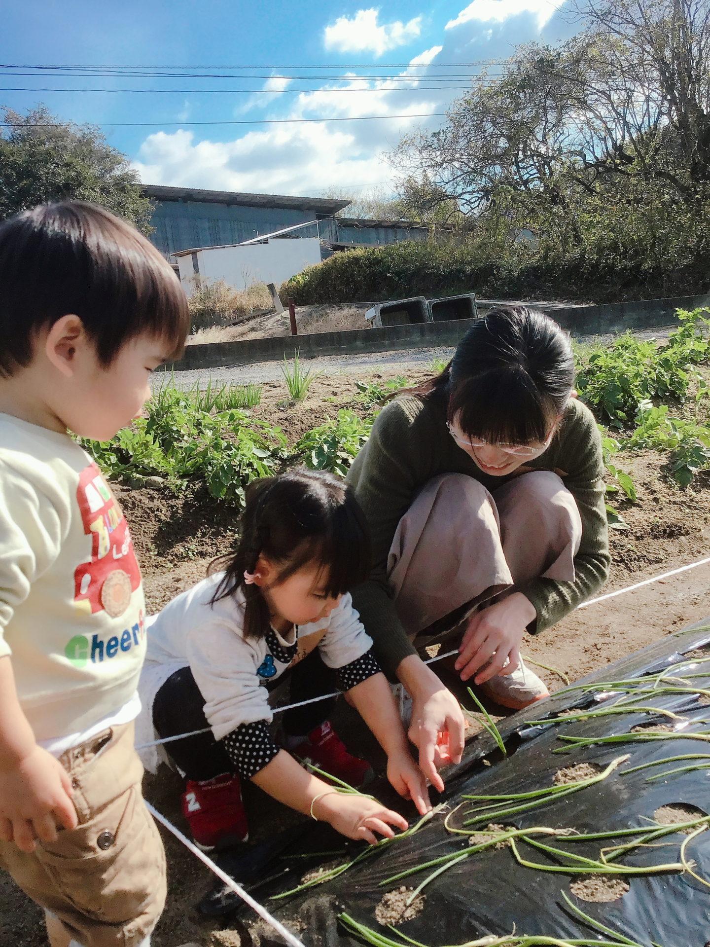 福山市注文住宅家庭菜園